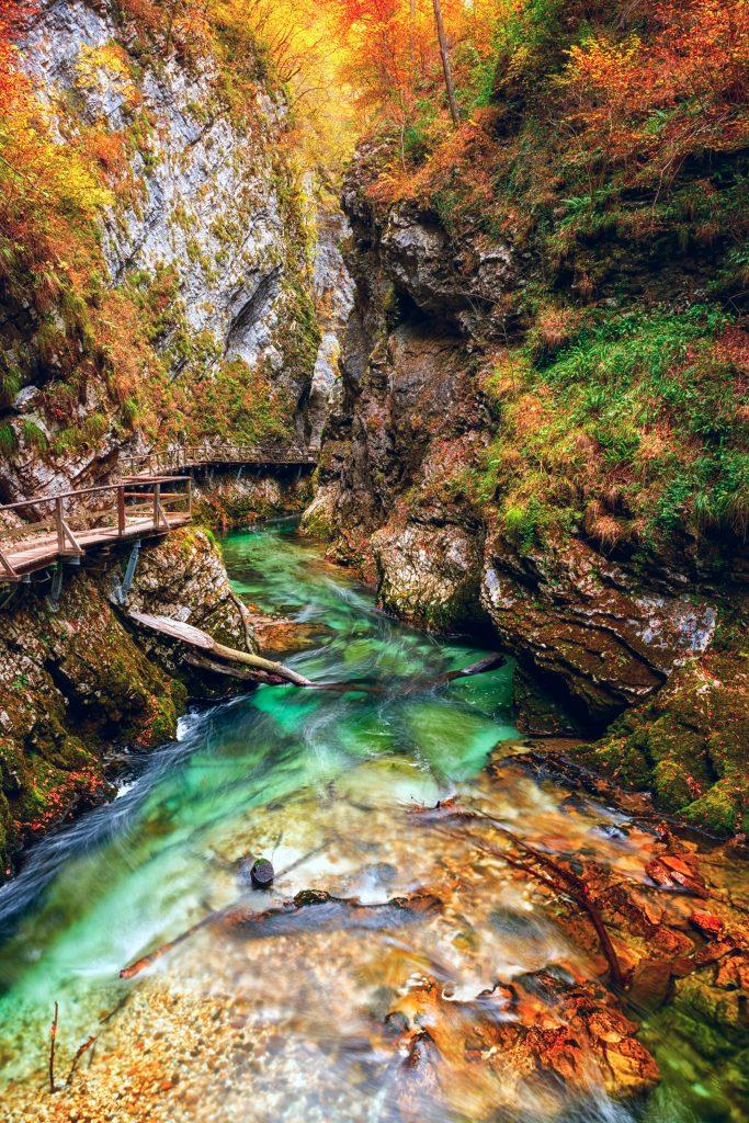 Bled Vintgar